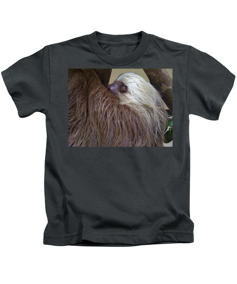 Sloth Kids T-Shirt featuring the photograph Sloth by Dolly Sanchez