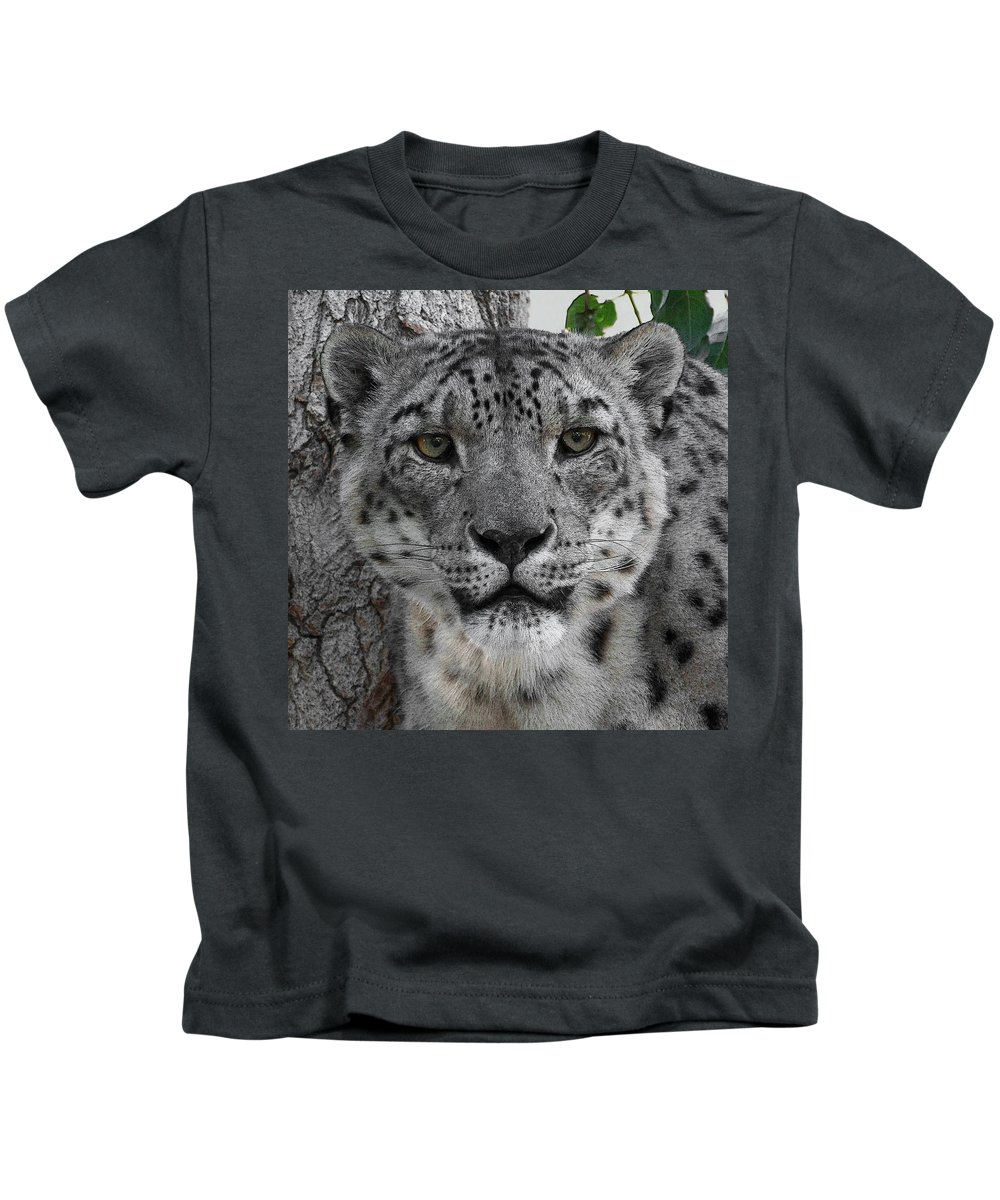 Animals Kids T-Shirt featuring the photograph Snow Leopard 5 Posterized by Ernie Echols