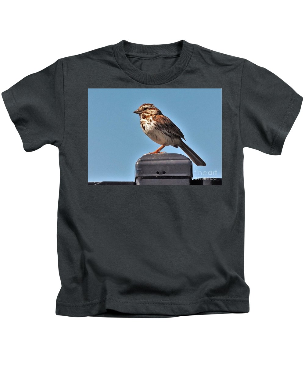 Sparrow Kids T-Shirt featuring the photograph Song Sparrow Profile     Summer   Indiana by Rory Cubel
