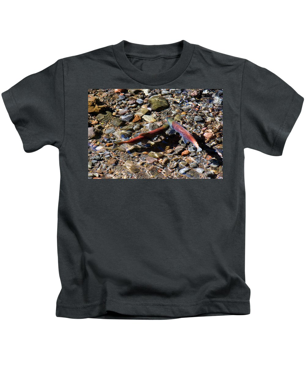 Animal Kids T-Shirt featuring the photograph Spawning Salmon - Odell Lake Oregon by Randall Ingalls