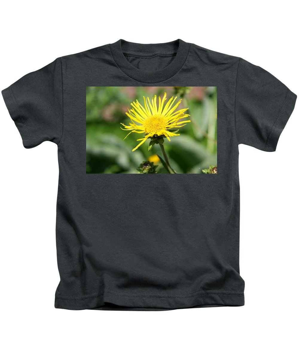 Daisy Kids T-Shirt featuring the photograph Spider Daisy by Christiane Schulze Art And Photography