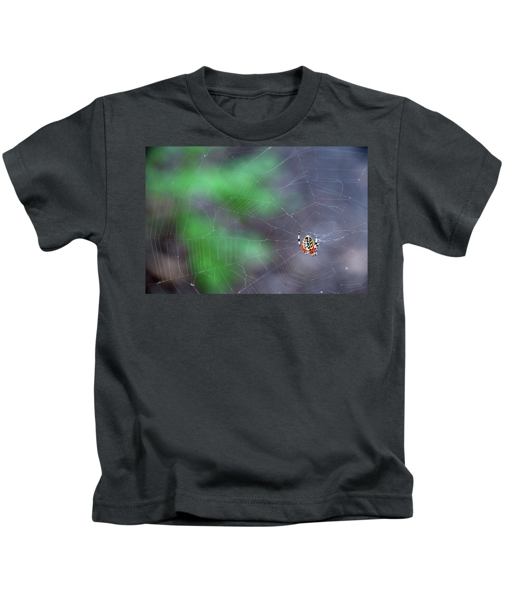Animal Kids T-Shirt featuring the photograph Spider In Web by David Arment
