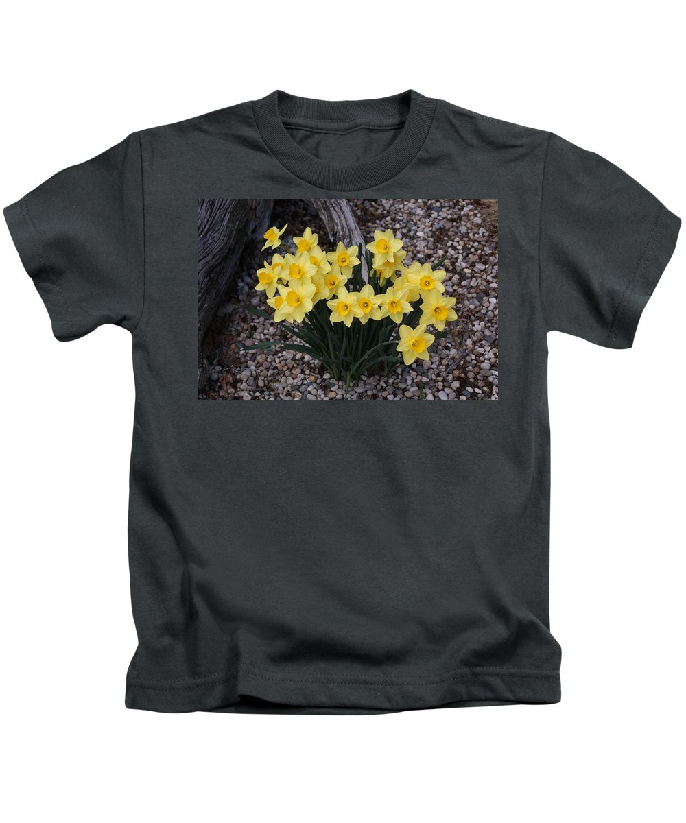 Usa Kids T-Shirt featuring the photograph Spring Cheerleaders - Daffodils by Holly Eads
