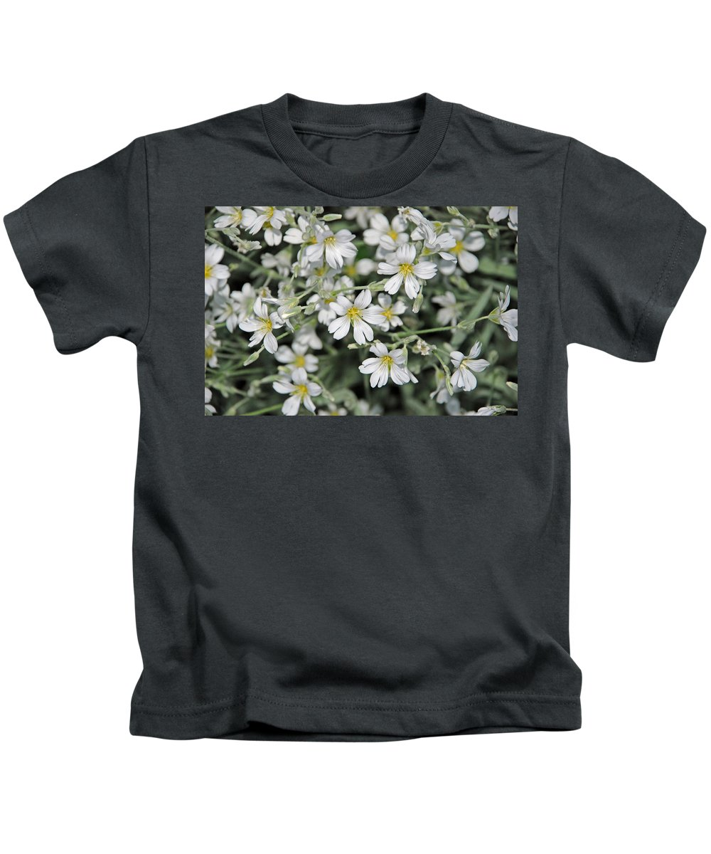 Spring Kids T-Shirt featuring the photograph Spring Flowers by Carol Eliassen