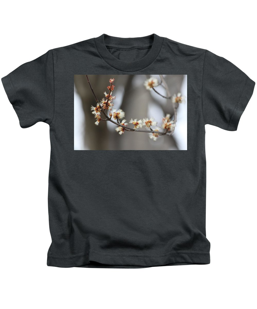 Buds Kids T-Shirt featuring the photograph Spring by Lauri Novak