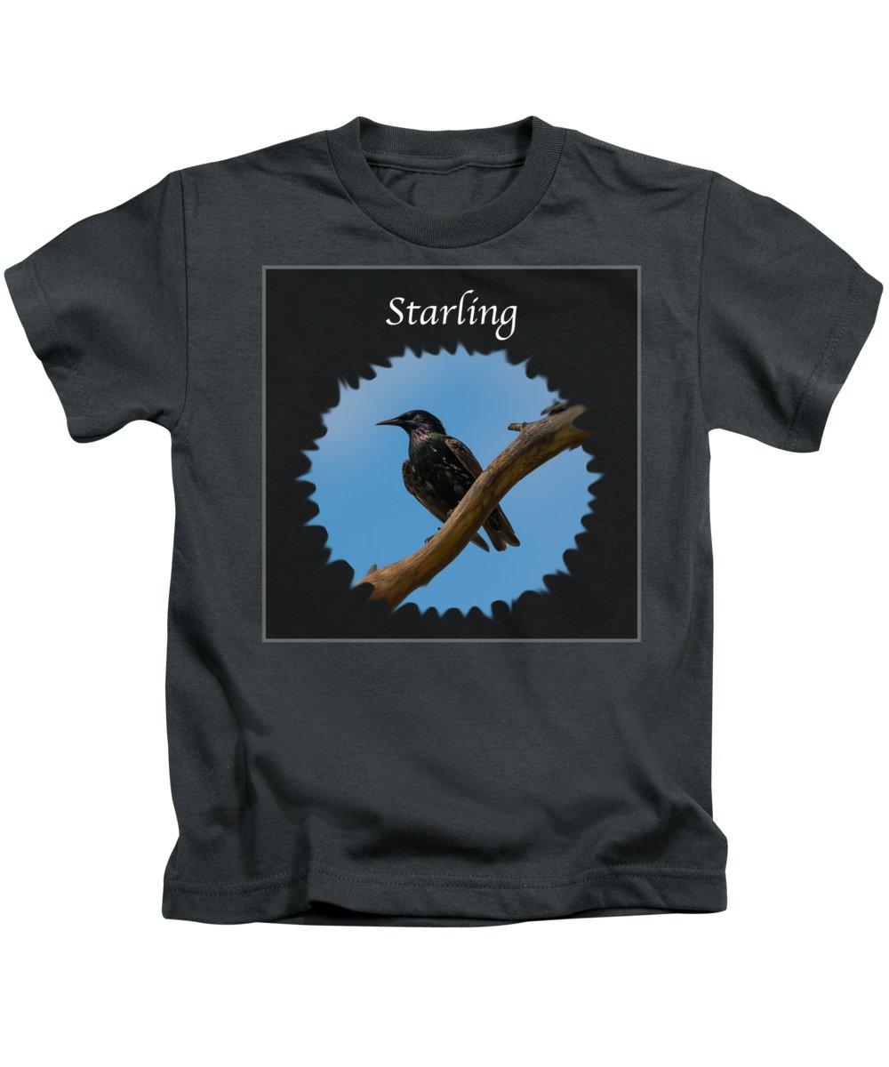 Starlings Kids T-Shirts