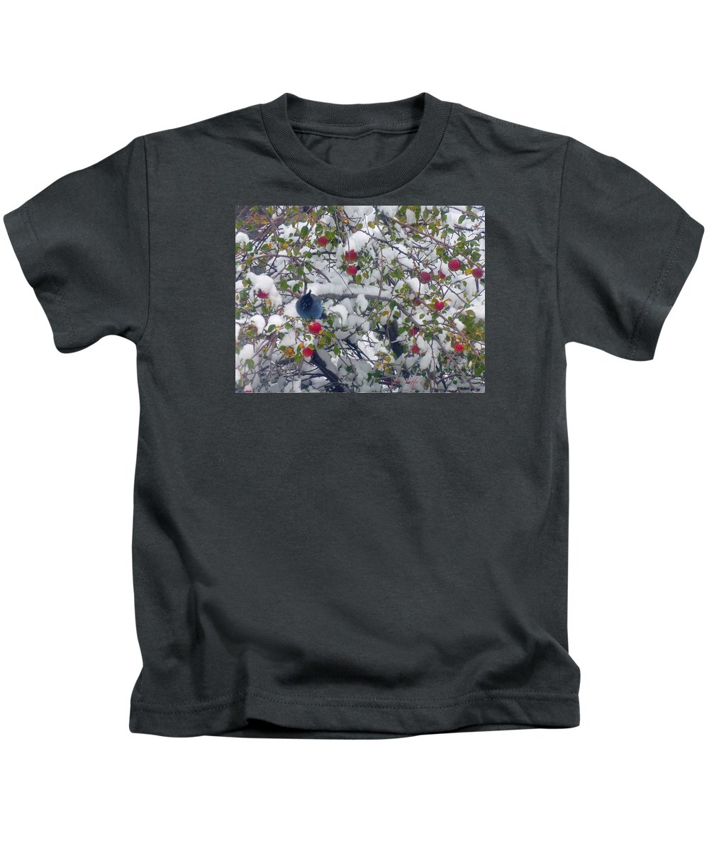 Birds Animals Landscapes Winter Appletree Colorado Rocky Mountains Snow Kids T-Shirt featuring the photograph Stellar Jay by George Tuffy
