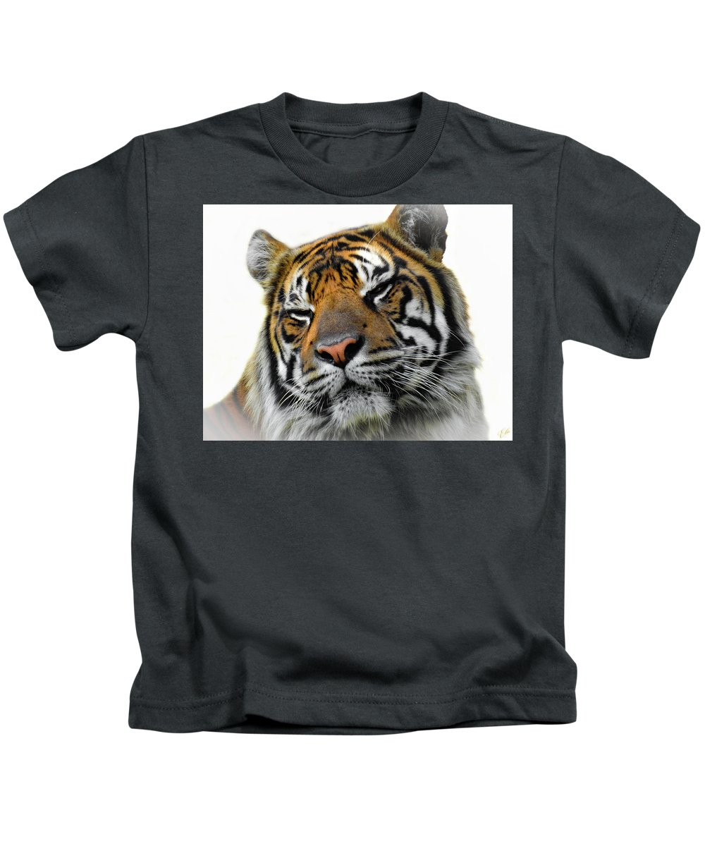 Nature Kids T-Shirt featuring the photograph Stripes, No. 28 by Elie Wolf