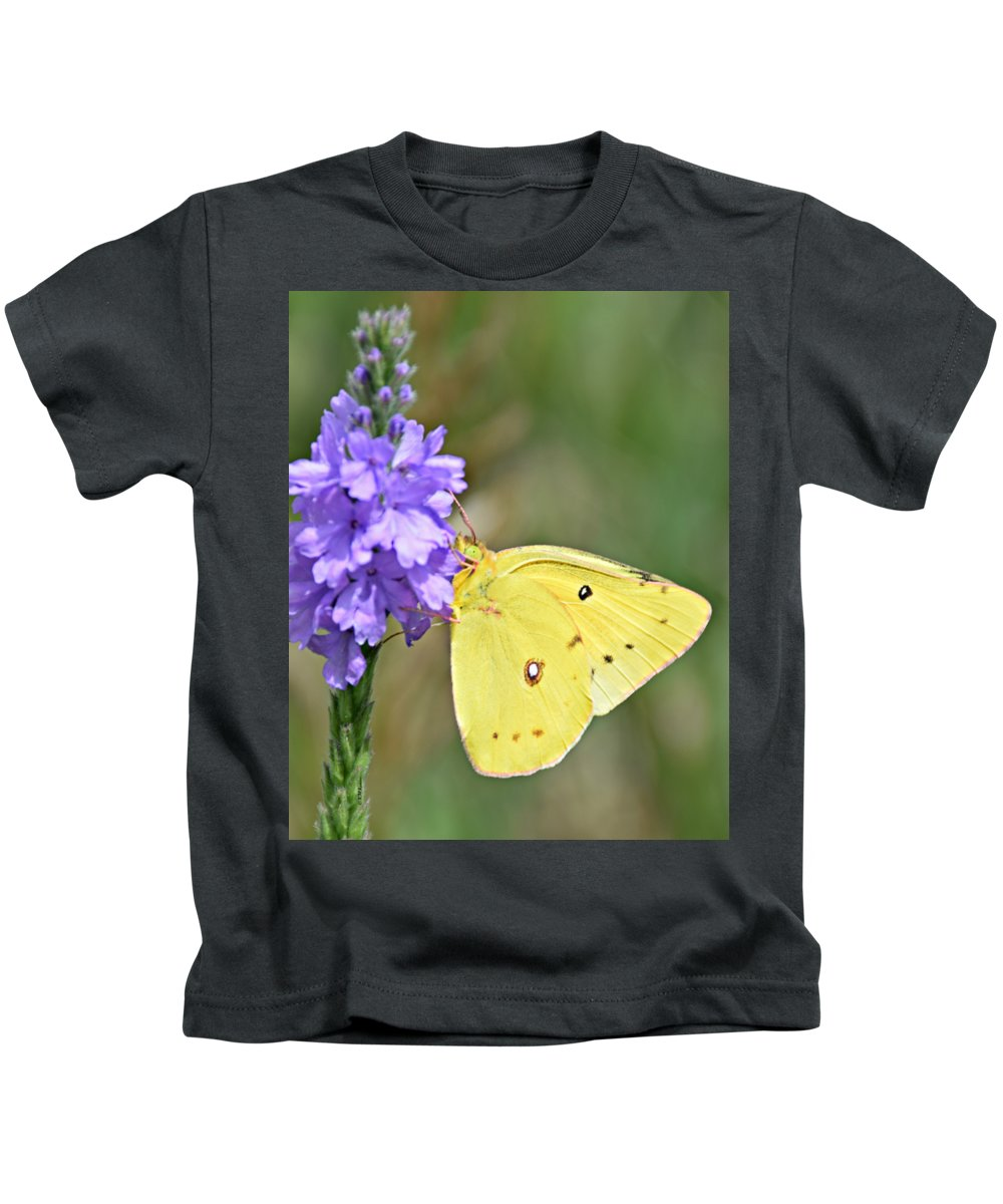 Sulfur Butterfly Kids T-Shirts