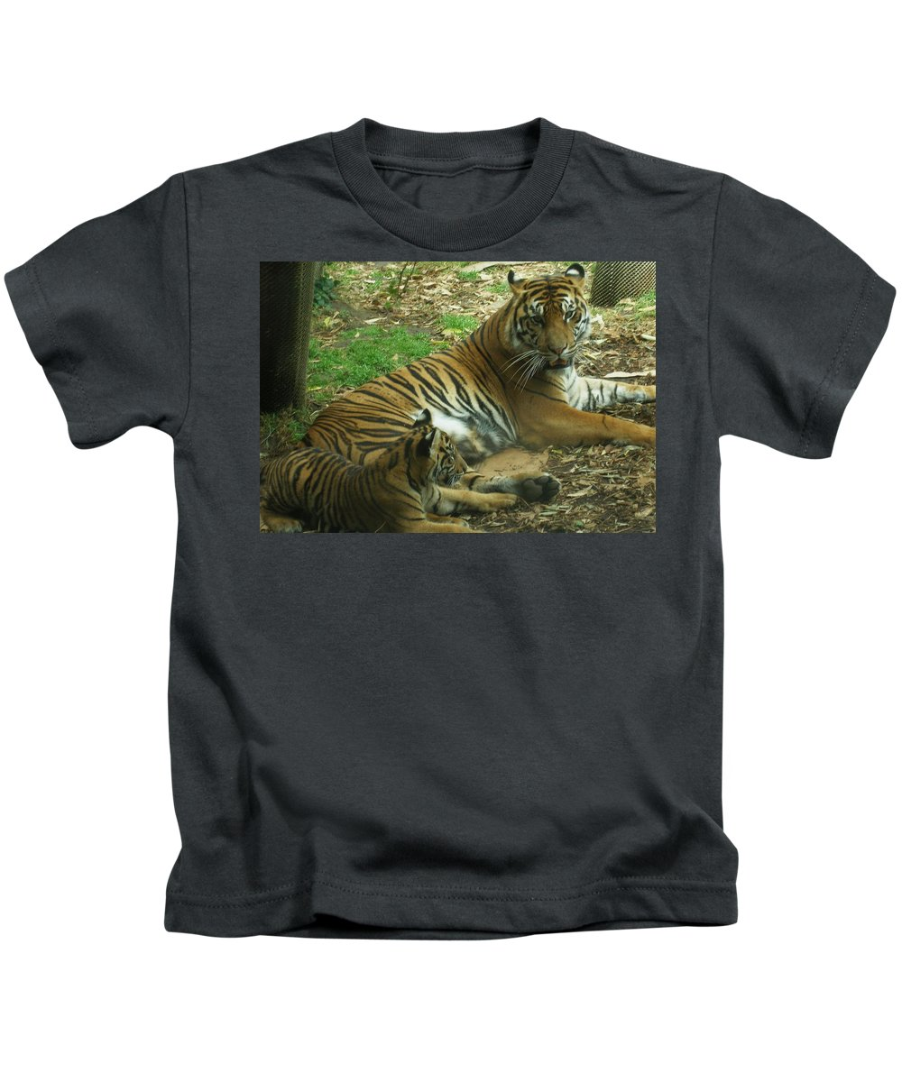 Tiger Kids T-Shirt featuring the photograph Sumatran Tigers by Travis Day