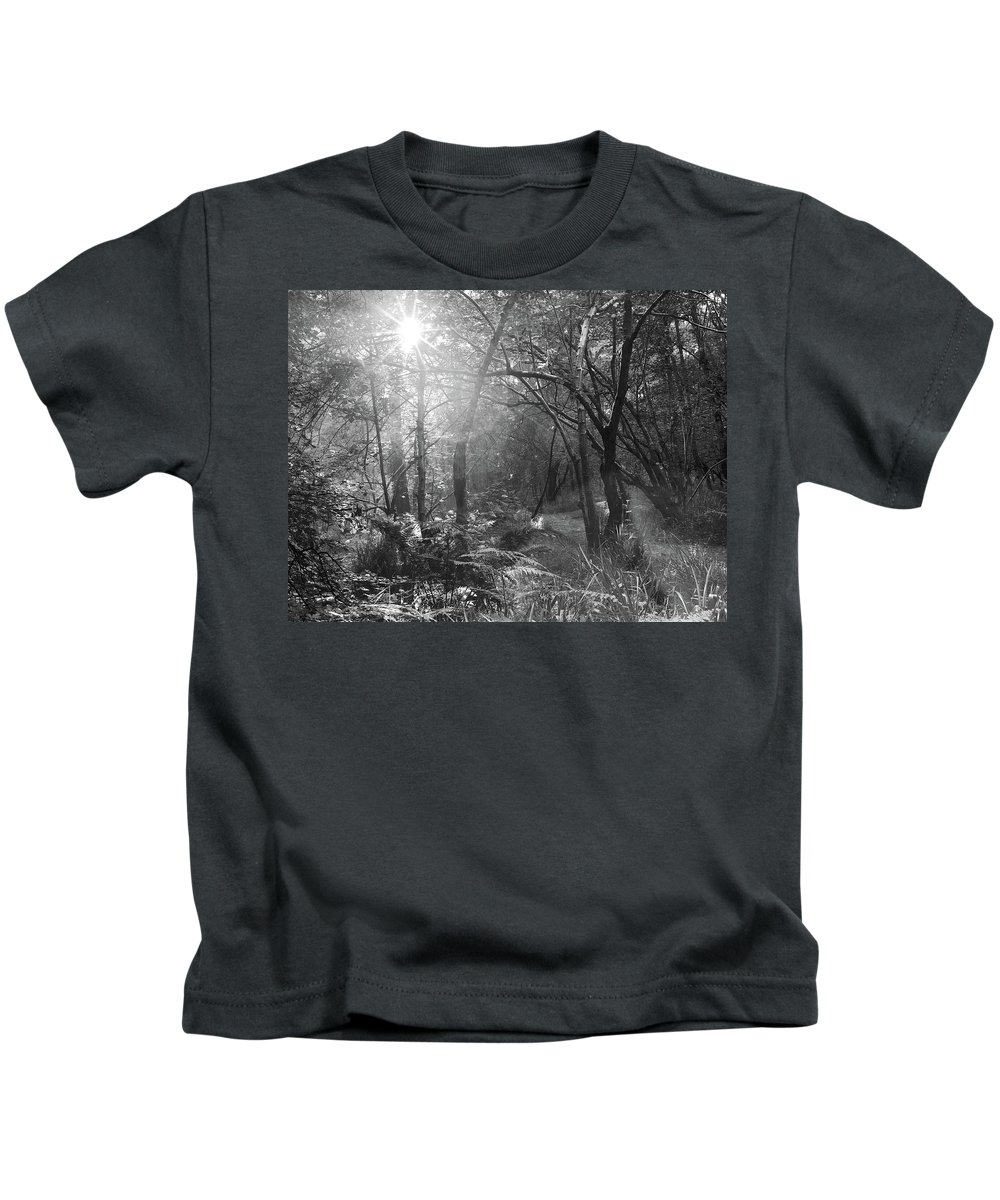Kids T-Shirt featuring the photograph Sunlit Woods, West Dipton Burn by Iain Duncan