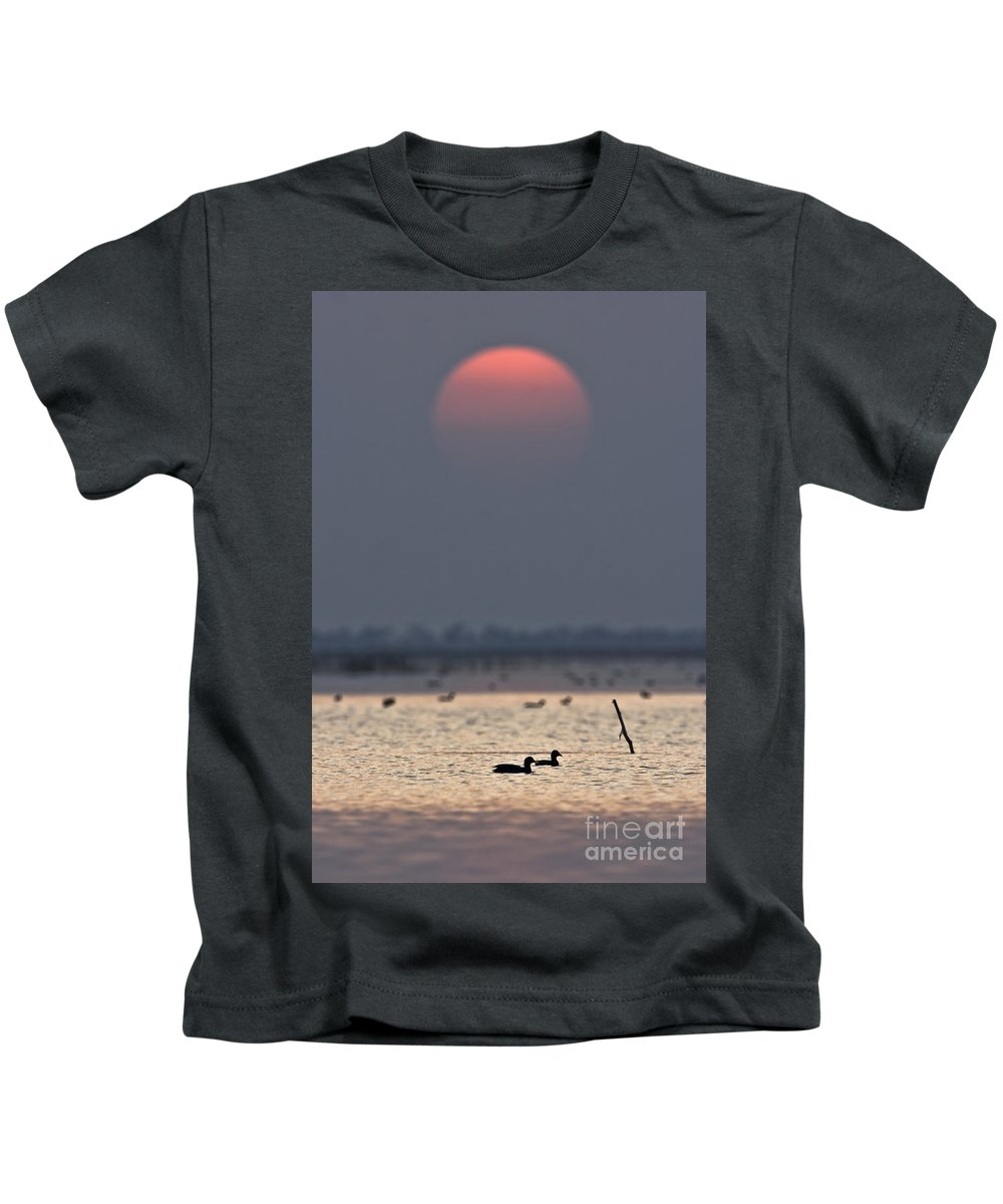 Sunset Kids T-Shirt featuring the photograph Sunset With Coots by Hitendra SINKAR