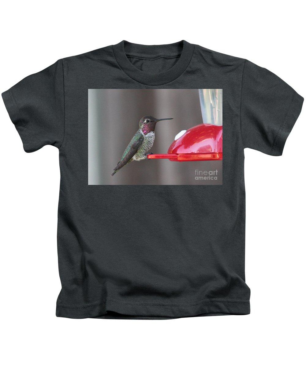 Hummingbird Kids T-Shirt featuring the photograph Sweet Hummingbird Face by Carol Groenen
