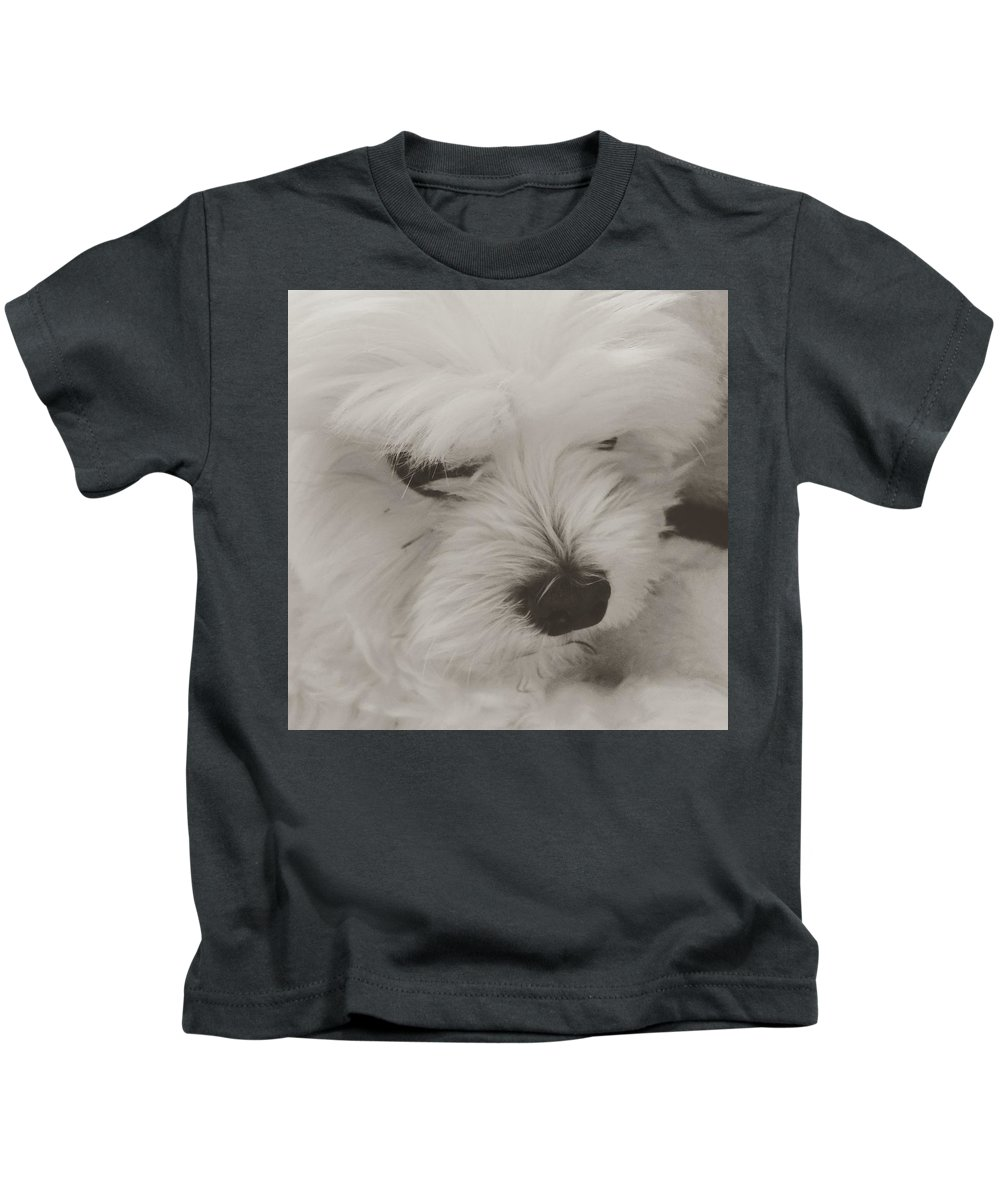 My Maltese Kids T-Shirt featuring the photograph Sweet Ira by Monica Sassano
