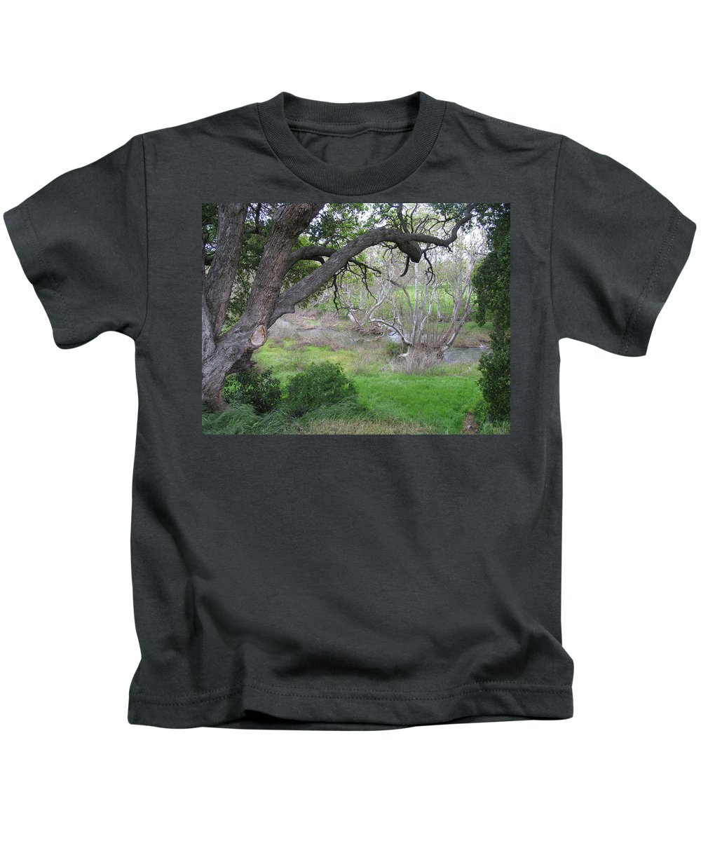 Landscape Kids T-Shirt featuring the photograph Sycamore Grove by Karen W Meyer