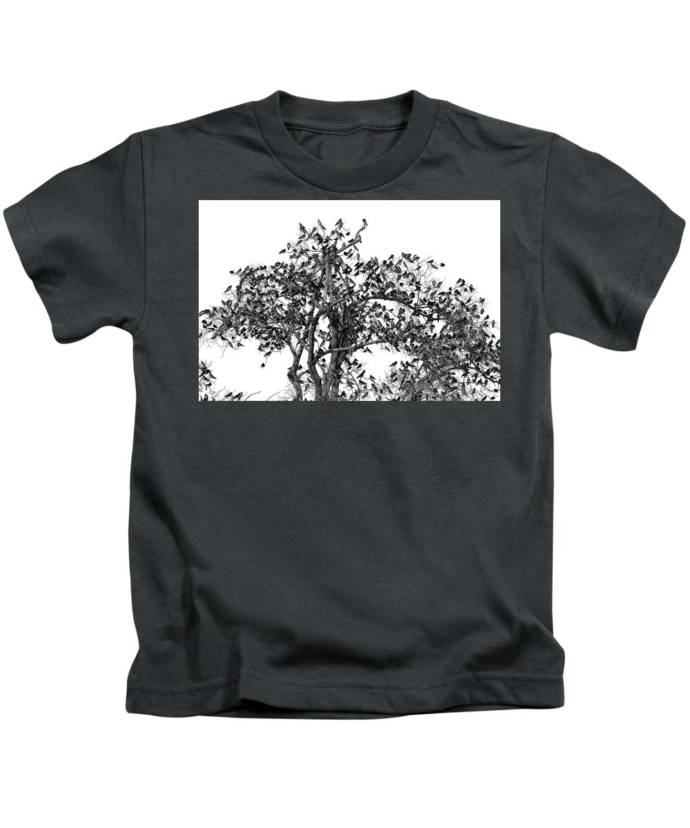 Birds Kids T-Shirt featuring the photograph The Birds And The Tree by Helton Mendes