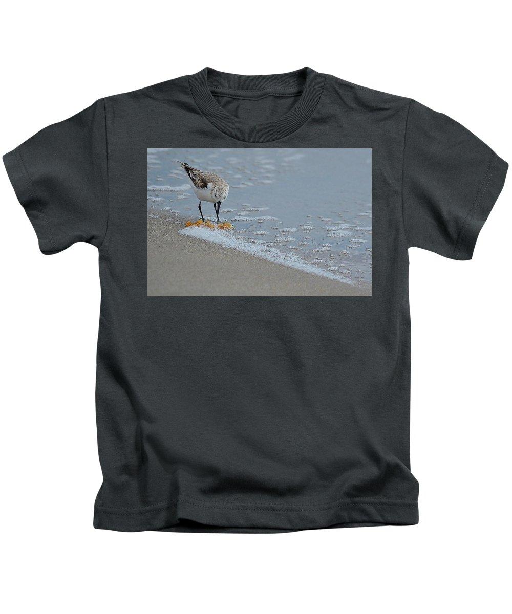 Shore Bird Kids T-Shirt featuring the photograph The Curious Little Sanderling 1 by Adam Riggs