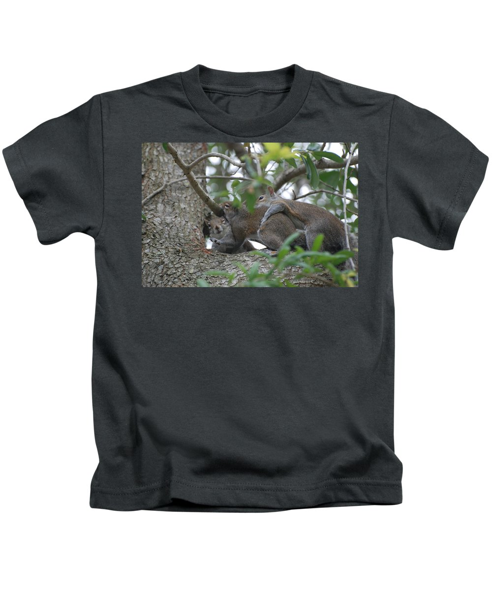 Squirrels Kids T-Shirt featuring the photograph The Fight For Life by Rob Hans