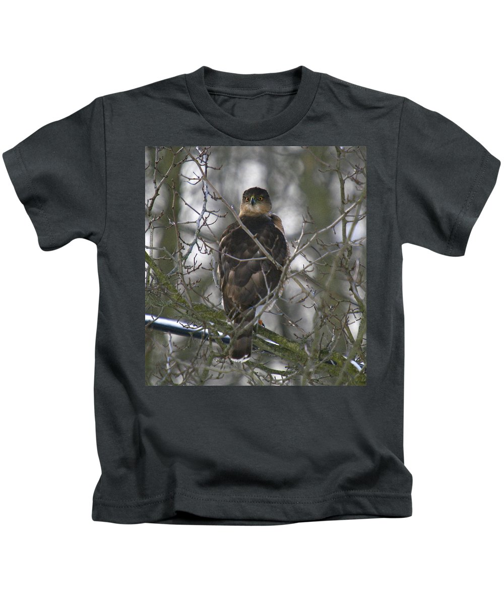 Bird Kids T-Shirt featuring the photograph The Hawks Have Eyes by Robert Pearson