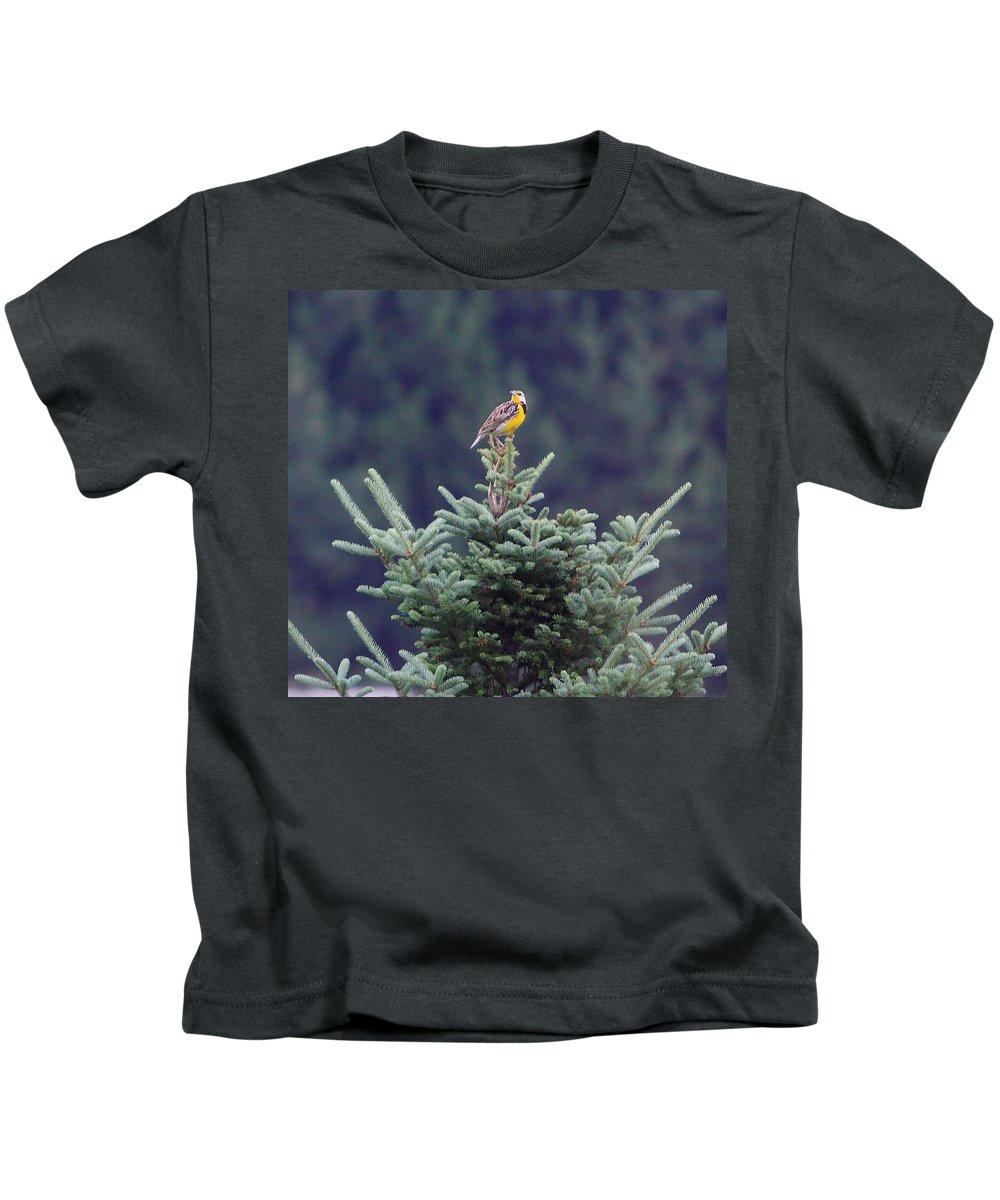 Meadow Robert Pearsonlark Kids T-Shirt featuring the photograph The Lark by Robert Pearson