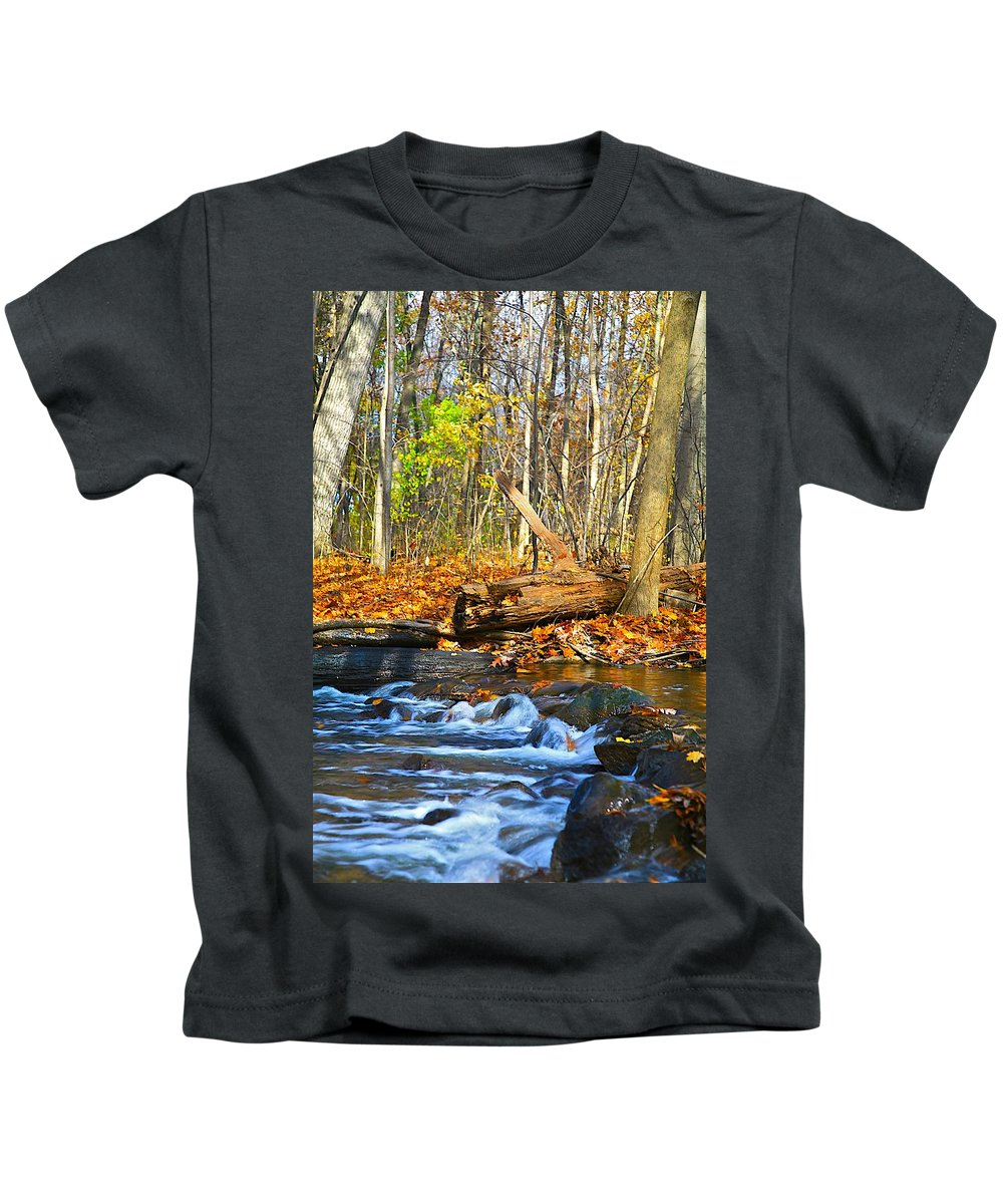 Fall Kids T-Shirt featuring the photograph The Last Of The Fall Color by Robert Pearson