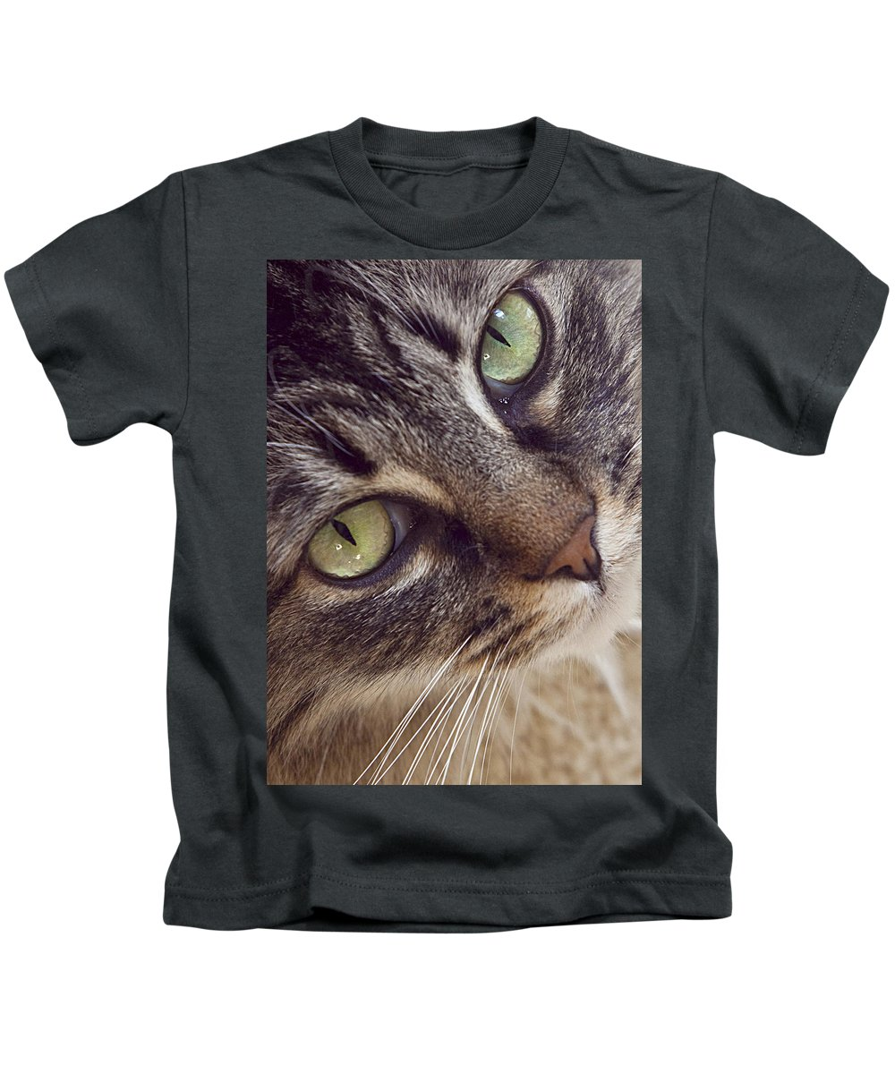 Cat Kids T-Shirt featuring the photograph The Look Of Love by Lynn Andrews