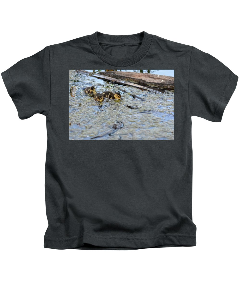 Duck Kids T-Shirt featuring the photograph The Three Amigos Ducklings by Asbed Iskedjian