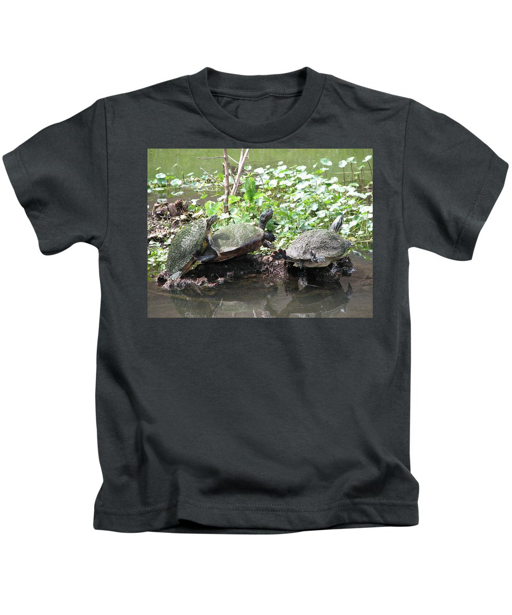 Turtle Kids T-Shirt featuring the photograph Three Amigos by Stacey May