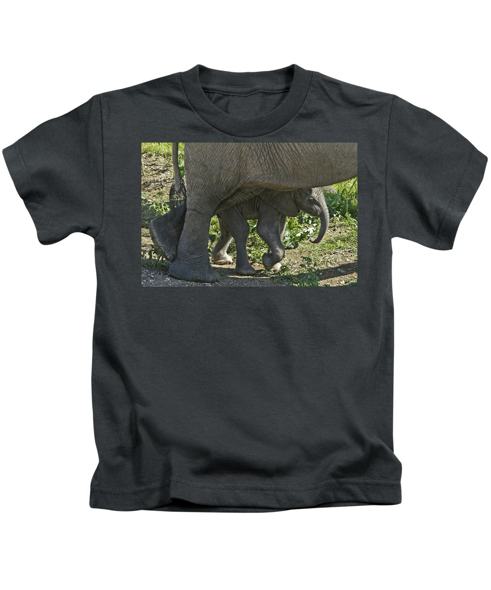 Africa Kids T-Shirt featuring the photograph Tiny Newborn by Michele Burgess