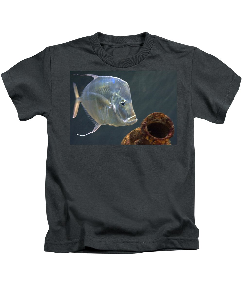 Fish Profile With Sunken Urn Kids T-Shirt featuring the photograph Treasure Guard by Jerry Deroo