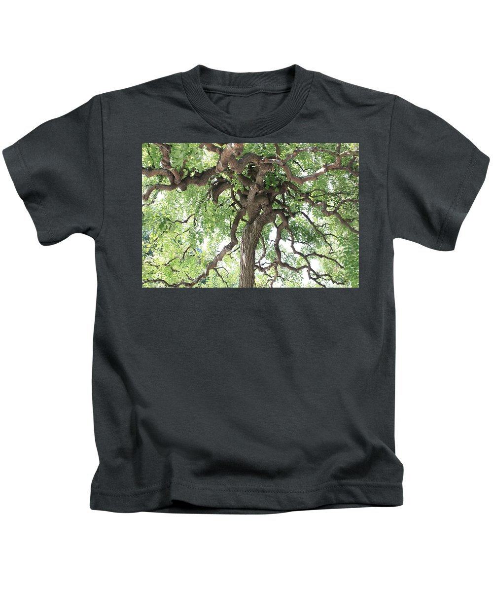 Tree Kids T-Shirt featuring the photograph Tree At Ming Tombs by Carol Groenen