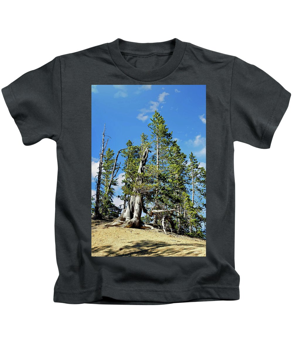 Trees Kids T-Shirt featuring the photograph Trees On The Edge 1 by John Trommer