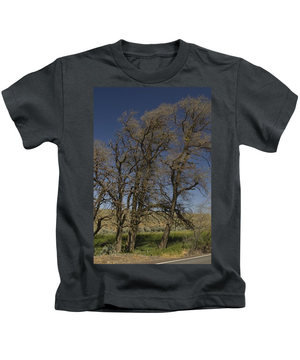 Trees Kids T-Shirt featuring the photograph Trees by Sara Stevenson