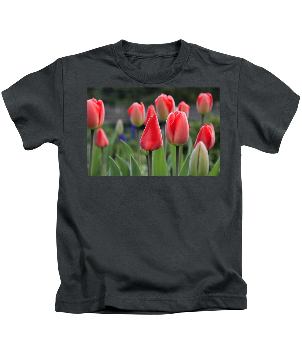 Tulips Kids T-Shirt featuring the photograph Tulips by Phil Crean