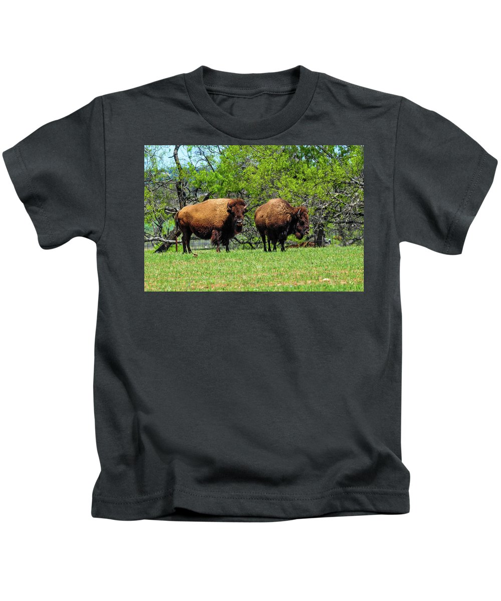Texas Kids T-Shirt featuring the photograph Two Buffalo Standing by Marilyn Burton