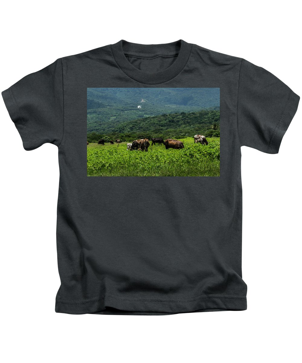Cows Kids T-Shirt featuring the photograph Vacas De Ahuachapan by Totto Ponce