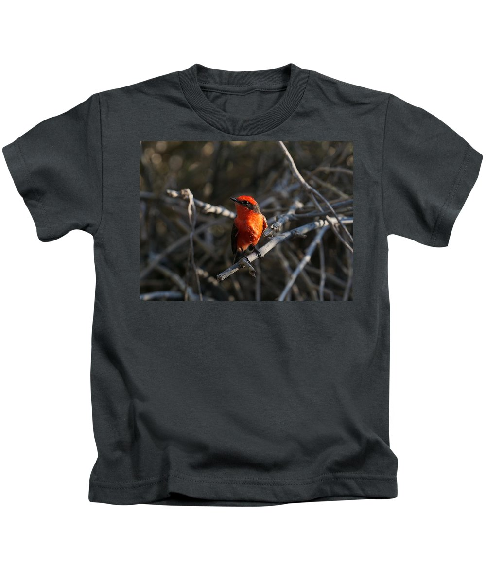 Kids T-Shirt featuring the photograph Vermilion by Diego Paredes