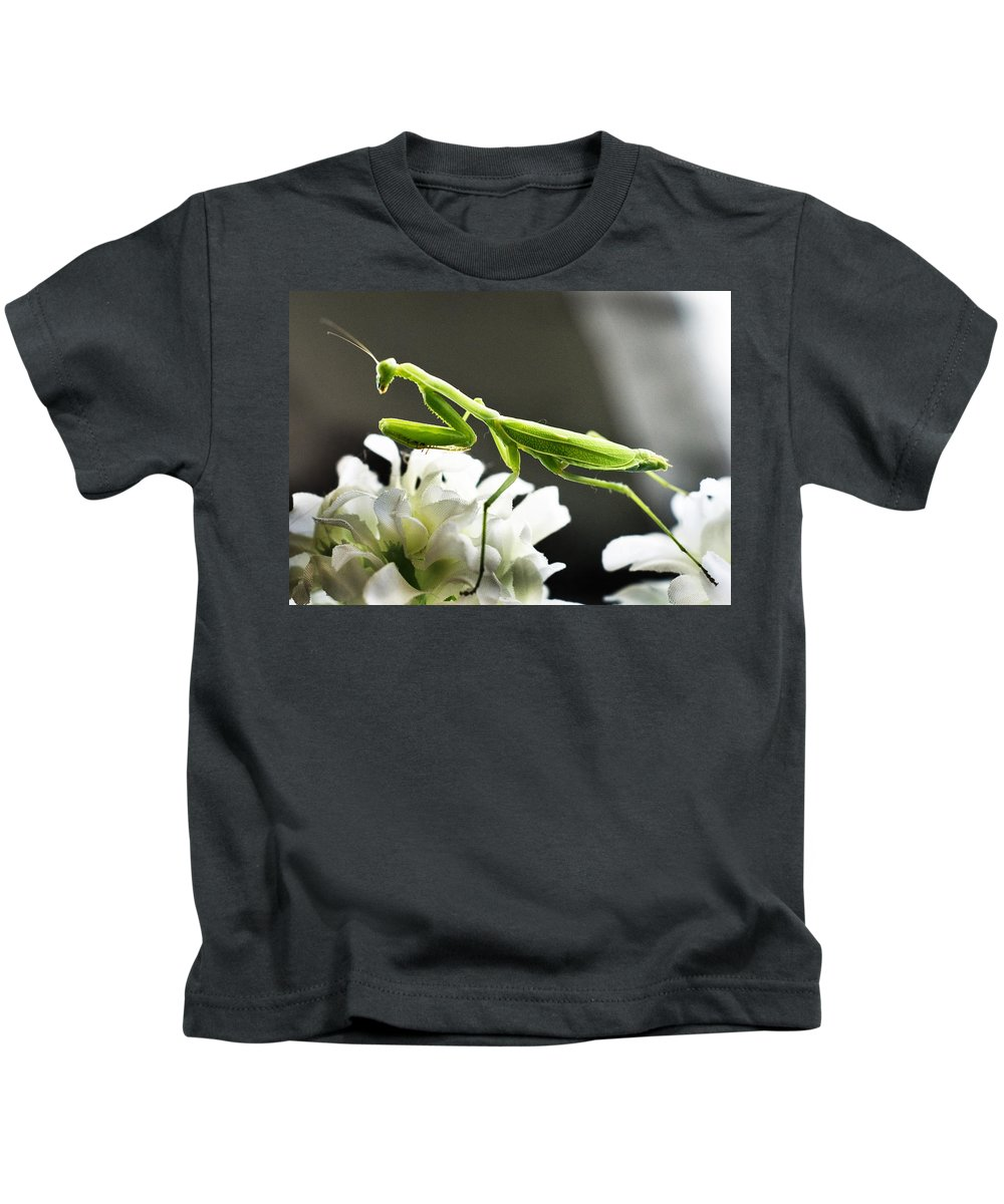 California Kids T-Shirt featuring the photograph Walkin Tall On Silk by Norman Andrus