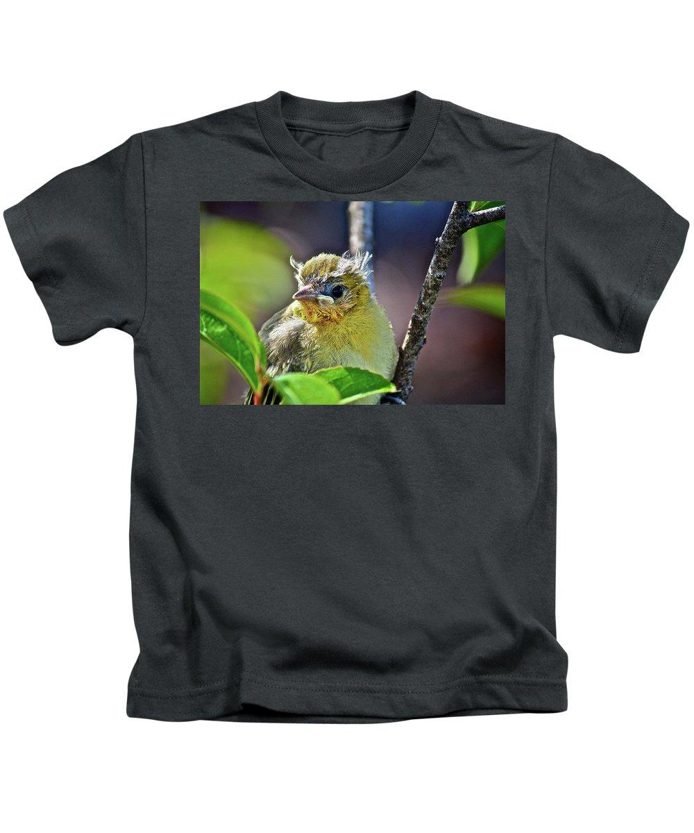 Bird Kids T-Shirt featuring the photograph Where Am I by Diana Hatcher