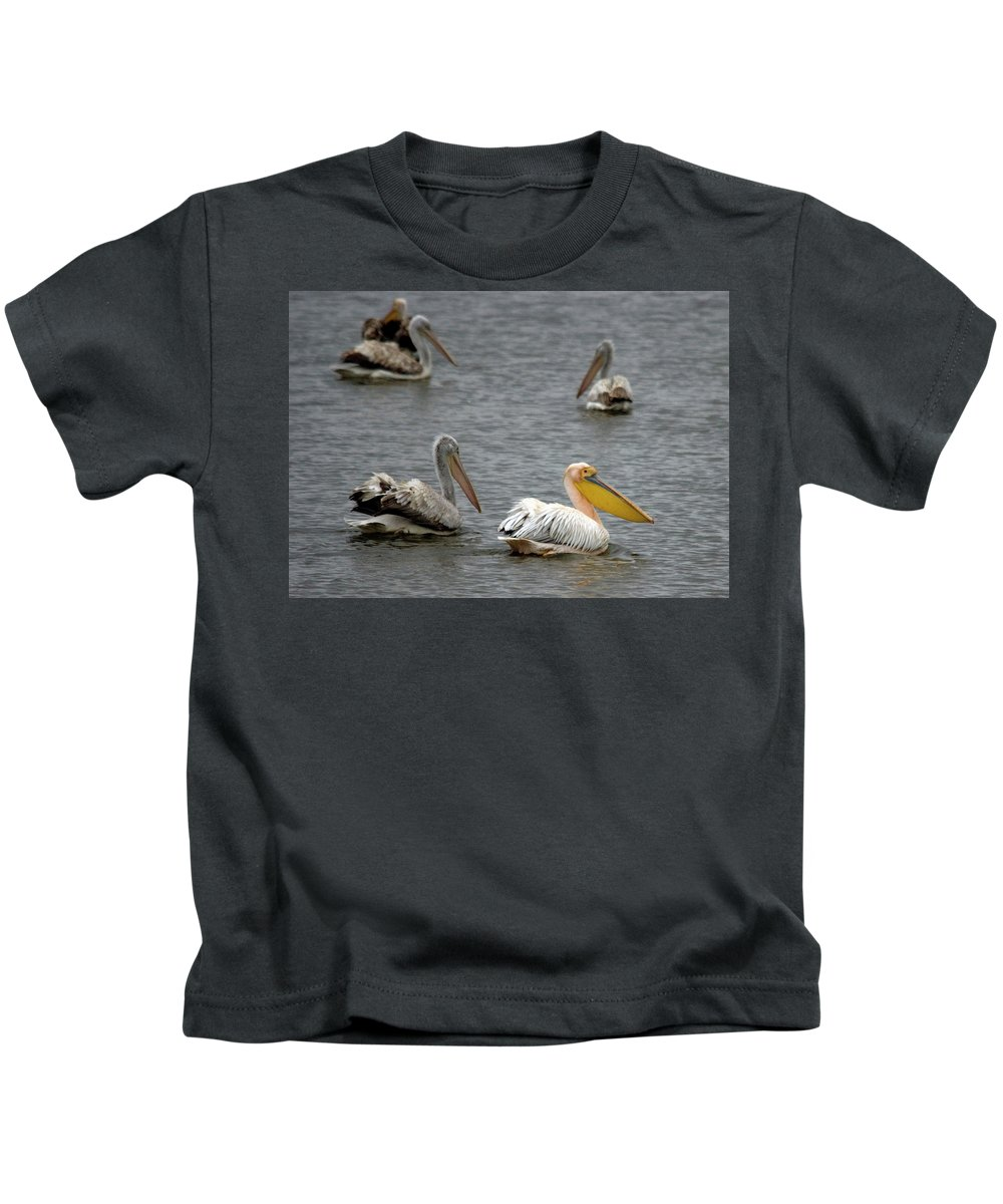 White Pelicans On Lake Kids T-Shirt featuring the photograph White Pelicans On Lake by Cliff Norton