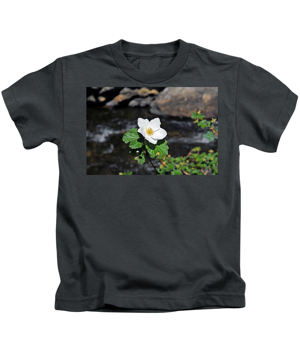 Rosa Rugosa Kids T-Shirt featuring the photograph White Wild Rose In Big Thompson Canyon by Robert Meyers-Lussier