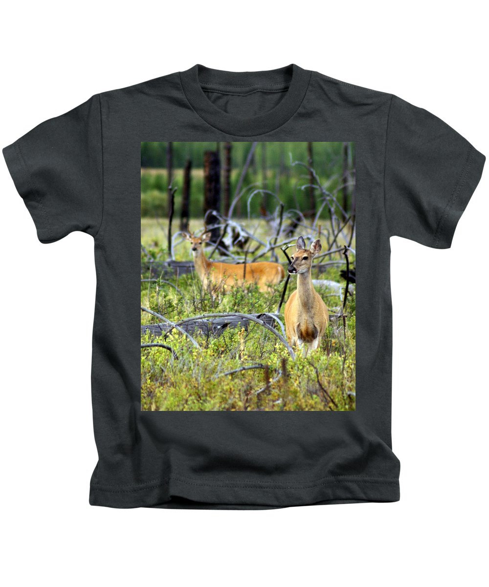 Deer Kids T-Shirt featuring the photograph Whitetails by Marty Koch