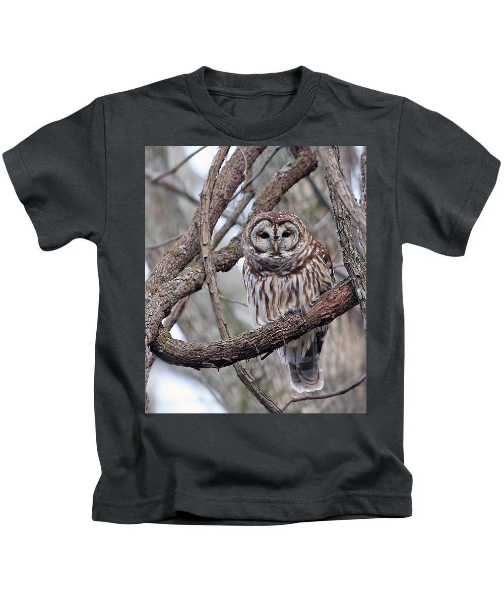Owl Kids T-Shirt featuring the photograph Winter Perch by Gina Fitzhugh