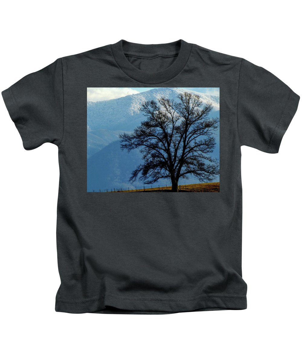 Nature Winter Mountains Snow Landscape Country Kids T-Shirt featuring the photograph Winter Tree by Judy Baird