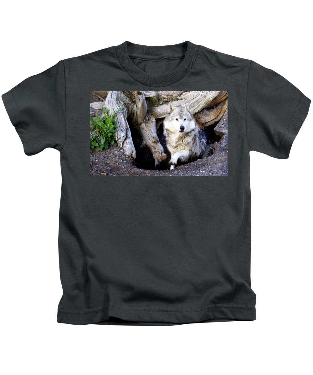Wolf Kids T-Shirt featuring the photograph Wolf Den 1 by Marty Koch