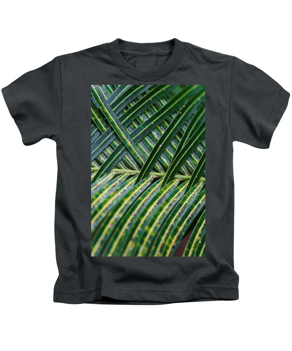 Kids T-Shirt featuring the photograph Woven by Wayne Wilkinson