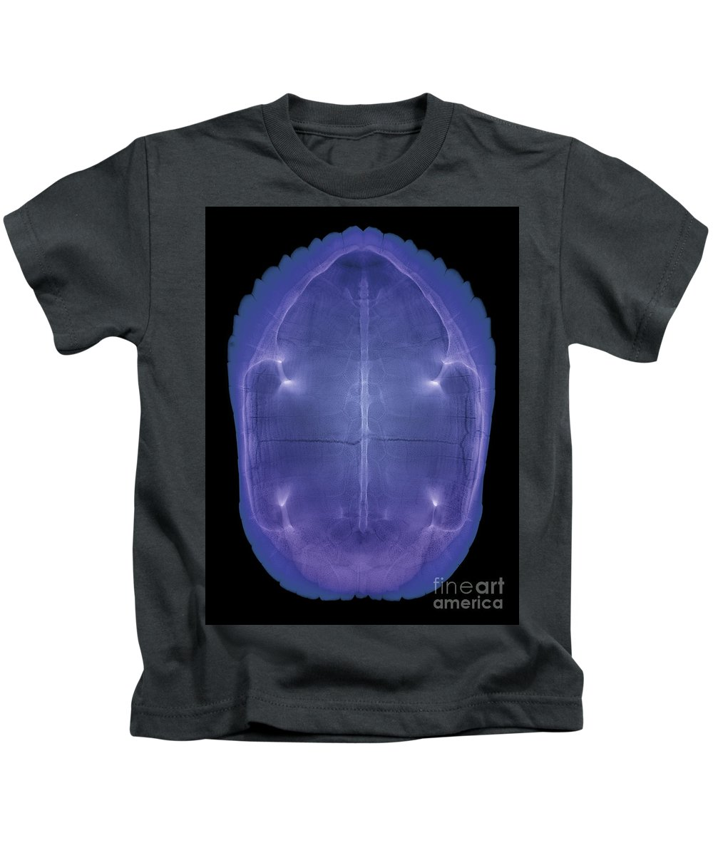 Radiograph Kids T-Shirt featuring the photograph X-ray Of A Turtle Shell by Ted Kinsman