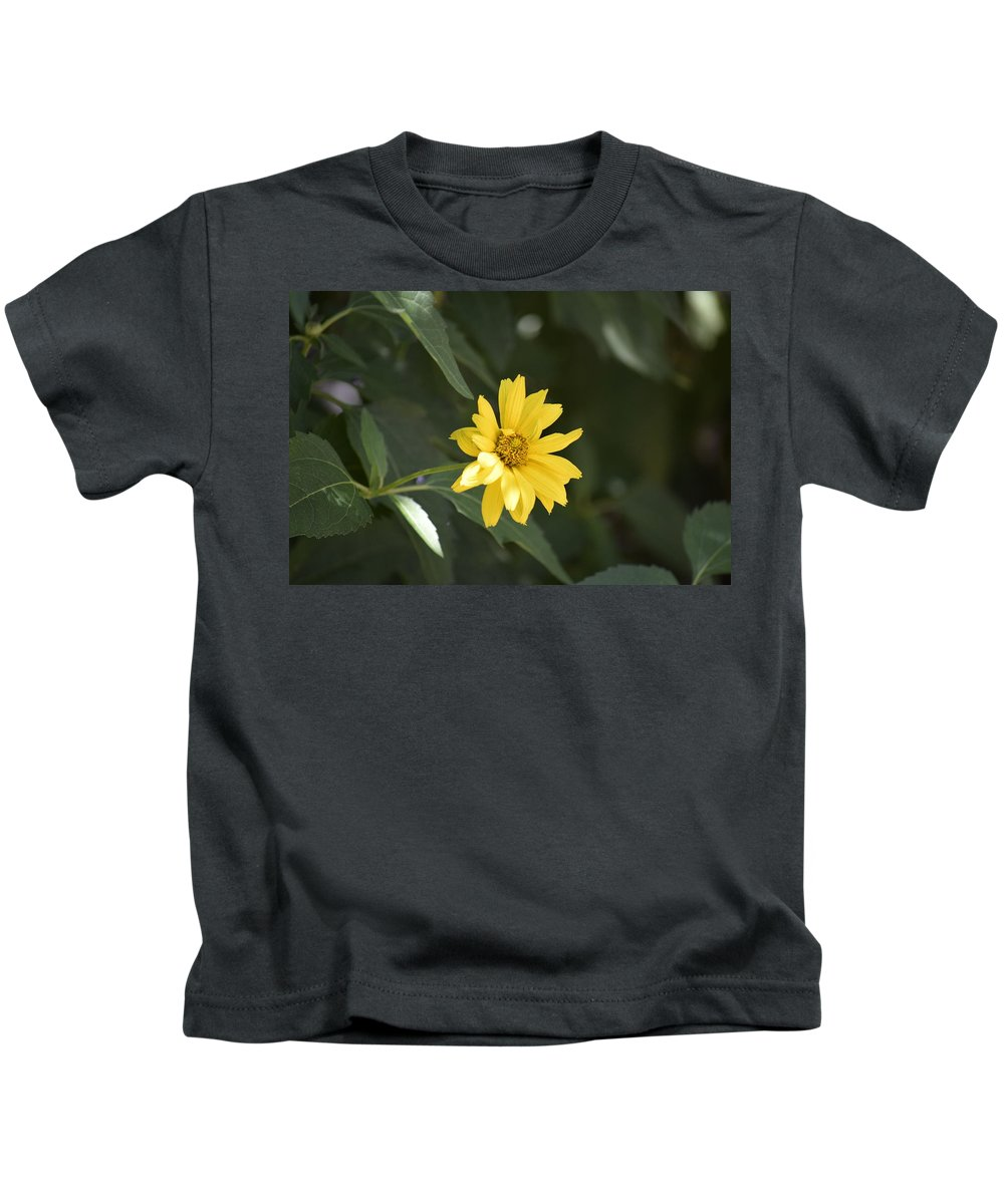 Yellow Kids T-Shirt featuring the photograph Yellow Beauty by Anita Goel