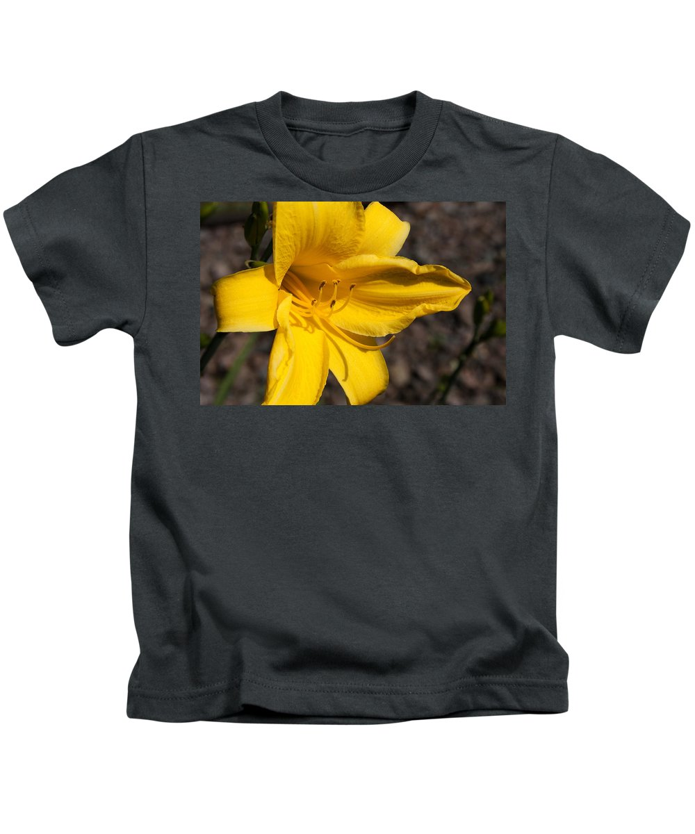 Flower Kids T-Shirt featuring the photograph Yellow by Bob Mintie