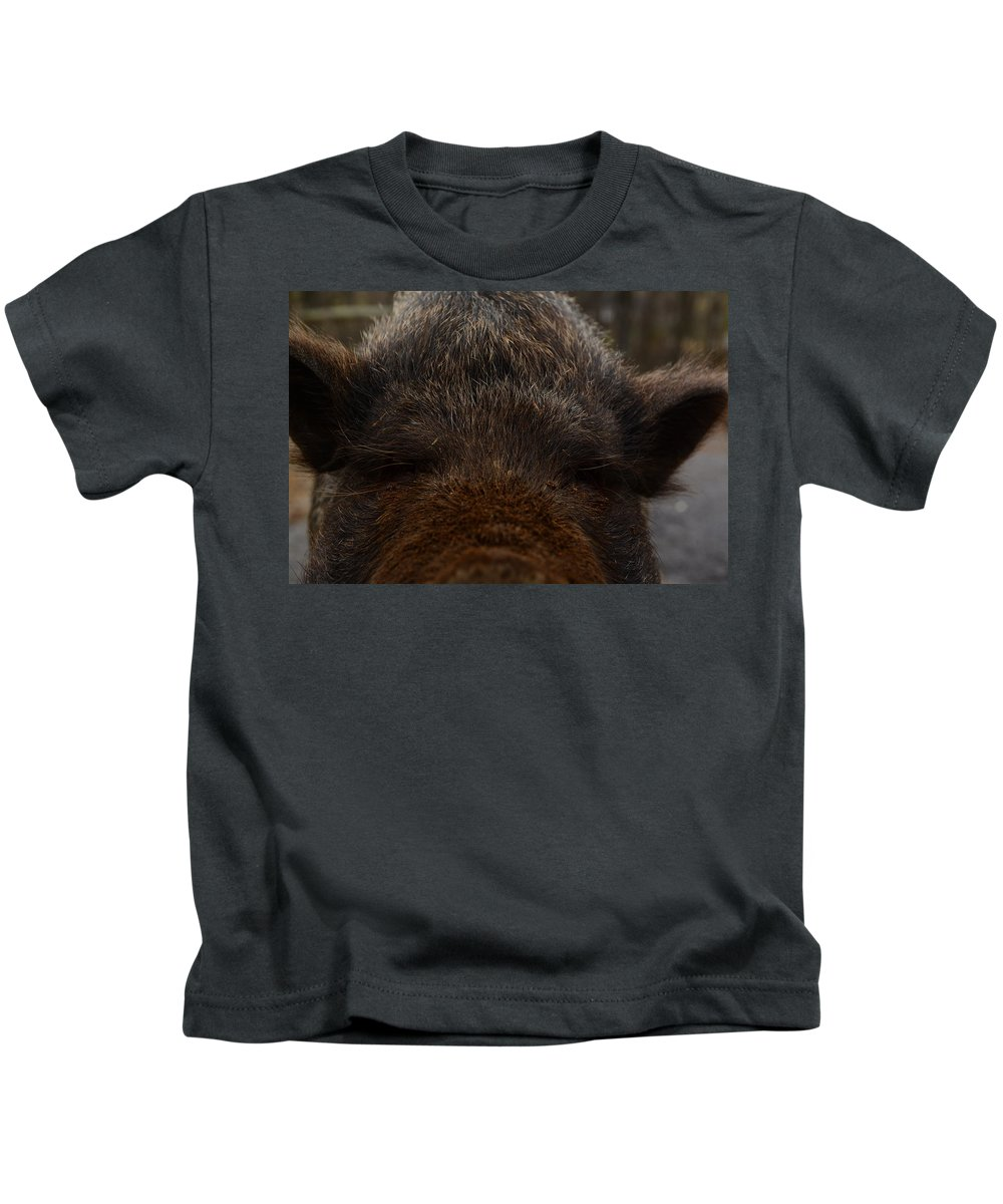 Pot Belly Pig. Kids T-Shirt featuring the photograph Your Lense Is On My Nose by Cory Berger